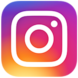 swlingewaard button instagram